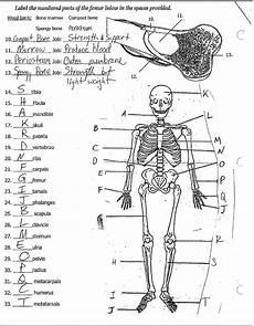 science worksheets 7th grade 13457 7th grade science
