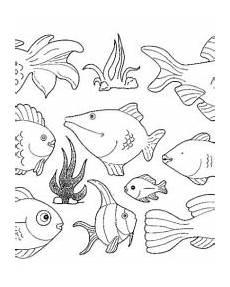 fische ausmalbilder gratis zum ausdrucken
