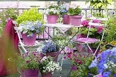 sommer auf dem balkon kleinen balkon gestalten laden sie den sommer zu sich ein
