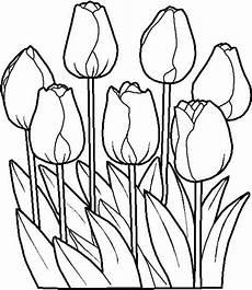 Blumen Zum Ausmalen Malvorlagen Blumen Ausmalbilder 5 Ausmalbilder Gratis