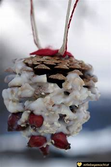 vogelfutter selber machen tannenzapfen zapfenfreude vogelfutter mal anders vogelfutter