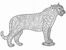 Ausmalbilder Tiere Panther Panther Coloring Vector For Adults Stock Vector Thinkstock