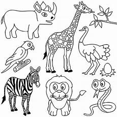 Ausmalbilder Tiere Afrika Baby Animal Coloring Pages Get Coloring Pages