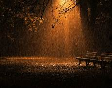 bruit de pluie et vent pluie et vent le jardin de jolland