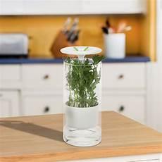 Kitchen Craft Herb Preserver by Glass Herb Preserver