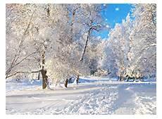 Malvorlagen Jahreszeiten Kostenlos Installieren Neue Kostenlose Bildschirmschoner Winterwald