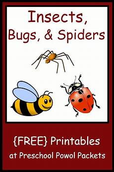 insect bug spider themed free preschool printables free preschool preschool printables