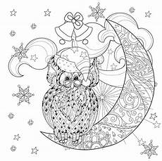 Ausmalbilder Eule Weihnachten Owl On Moon Coloring Pages