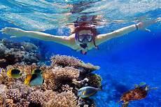 snorkeling los cabos passport