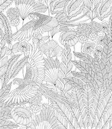 Malvorlagen Urwald Name Malvorlagen Urwald Name Tiffanylovesbooks
