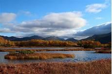 Gambar Karakteristik Bioma Tundra Bunda Alif Dunia Menulis