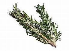 Herbes De Provence Wikip 233 Dia