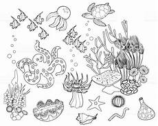 coloring pages ecosystem animals 16973 coloring page ecosystem of coral reef with different marine inhabitants stock illustration