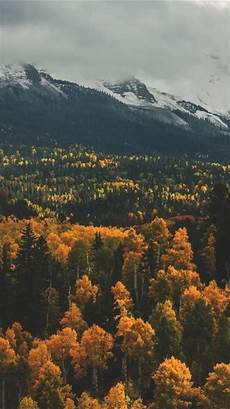 Iphone Aesthetic High Quality Fall Wallpaper