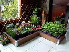 easy indoor gardening for beginners garden greenhouse