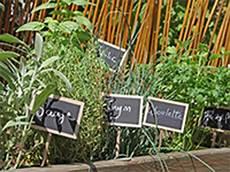 hochbeet richtig bepflanzen cultivating a raised bed garden with bio green biogreen