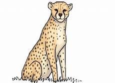 Kostenlose Malvorlage Gepard Window Color Vorlagen Geparden