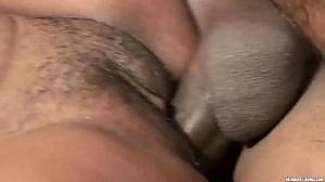 Xingu Pussy