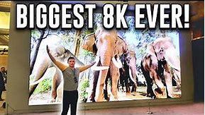 Biggest Samsung 8K TV Ever!