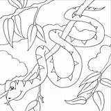 Snake Coloring Pages Print sketch template