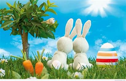 Easter Bunny Happy Wallpapers Quotes Funny Desktop