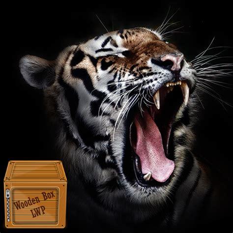 keren  wallpaper dinding harimau joen wallpaper
