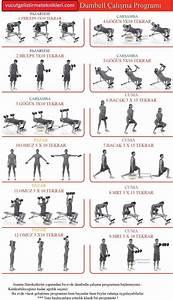 Bowflex Dumbbell Exercise Chart Evde Dambılla çalışma Programı Pazı Egzersiz