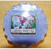 17 Best Images About Yankee Candle Obsessed On Pinterest