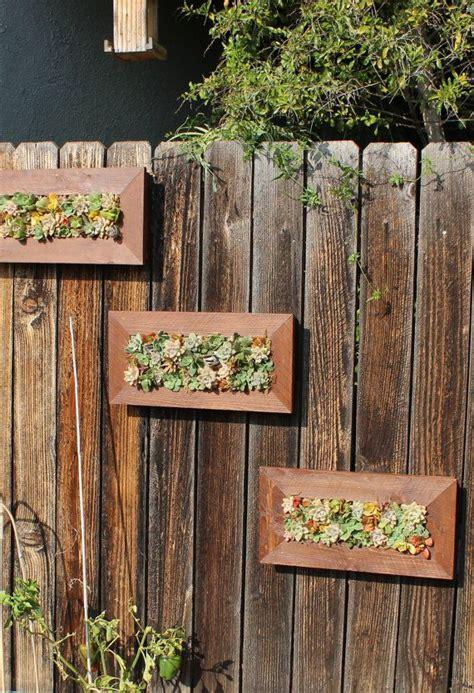 cedar succulent living wall indoor outdoor vertical