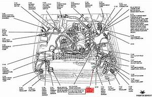 Wiring Diagram  29 2003 Ford Ranger Vacuum Hose Diagram
