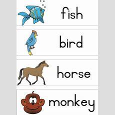 Animals Vocabulary Teacha