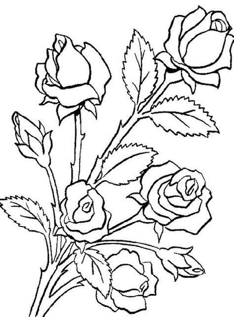 flower bouquet    roses coloring page color luna