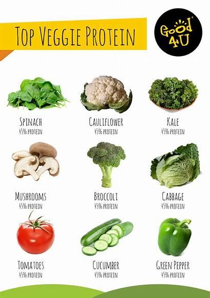 Protein Vegetables Vegan Foods Veggie Healthy Recipes