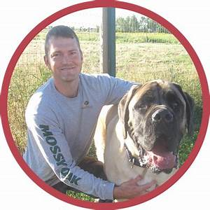 About us red ruff inn doggie daycare for Red dog daycare
