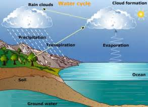 Water Cycle Evaporation