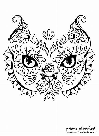 Exotic Cat Face Coloring Amazing Books Awesome