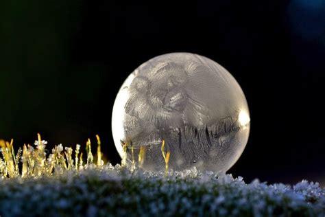bloemen in afwasmiddel en water fotograferen prachtige ijskristallen op bevroren zeepbellen