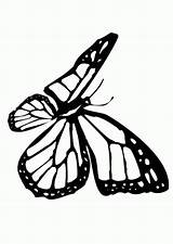 Butterfly Coloring Pages Monarch Crayola Clipart Printable Line Drawing Cartoon Stencils Wall Cliparts Drawings Library Kitty Hello Disney Popular Clip sketch template