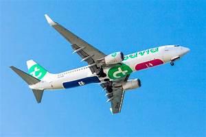 Telephone Transavia : studio dumbar transavia visual identity for a popular low cost airline ~ Gottalentnigeria.com Avis de Voitures