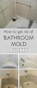 17 best images about mold mildew removal on pinterest With how to get rid of mold in the bathroom walls