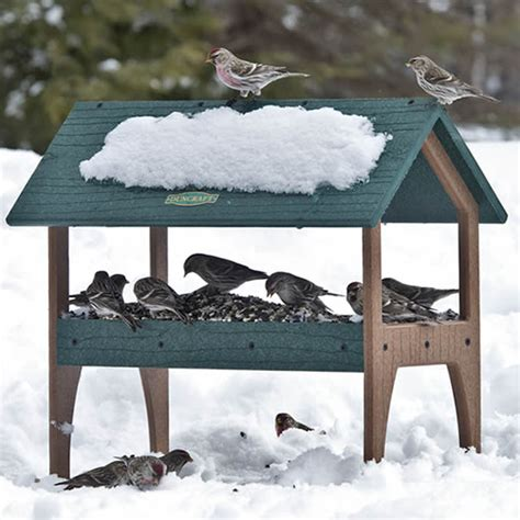 best 28 ground bird feeder squirrel proof ground