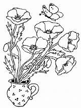 Poppies Coloring Poppy Vase Kolorowanki Colouring Printable Dzieci Maki Dla Flowers Bestcoloringpagesforkids Mohnblume Ausmalbilder Outline Simple Malvorlagen sketch template