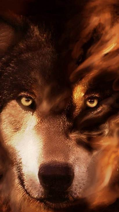 Wolf Cool Phones Iphone Wallpapers Phone King