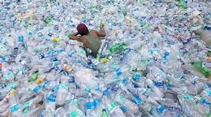 Plastic-eating Bacteria Set To Revolutionize Waste Disposal