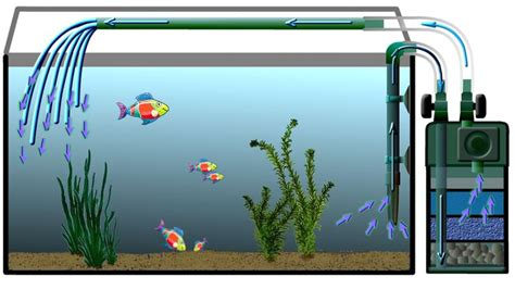 comment installer pompe aquarium entretien aquarium