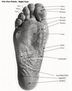 Where To Apply Oils On Your Feet Your Feet U0026 39 S Pores Are 4