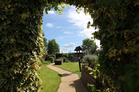darlington manor manor care home
