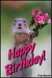 Happy Birthday Cute Animal Memes