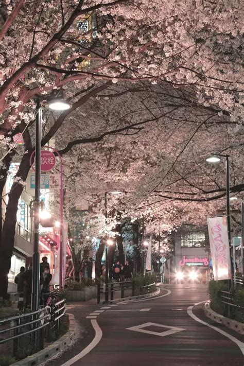 japan and image beautiful places