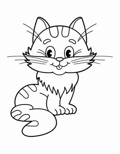 Kucing Gambar Coloring Cat Diwarnai Untuk Katze